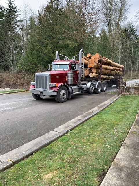 Logging operation on Samish Hill.