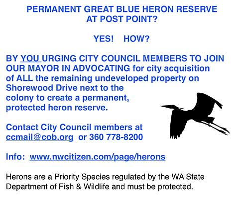 Example of heron flyer. See link below to easy to print pdf of flyers.